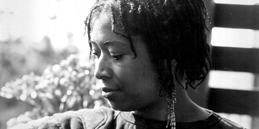Review Am I Blue Essay By Alice Walker  Oddfeather Creative Essay By Alice Walker